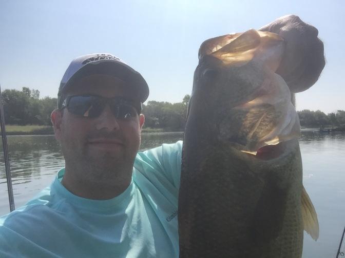 One of five fish on the Fluke Stick Jr.