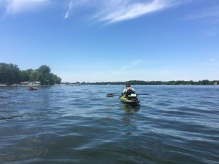 In search of finned creatures