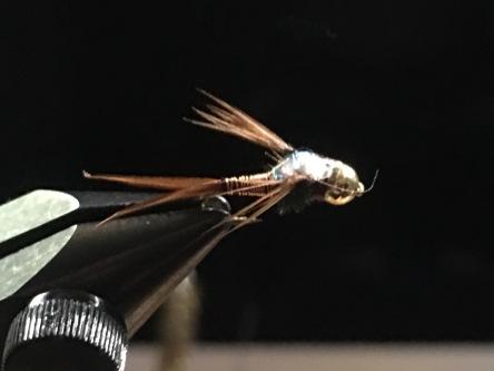 Copper John Nymph