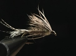 Brown Drake Emerger