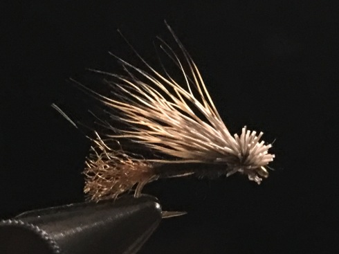 Low-riding Caddis