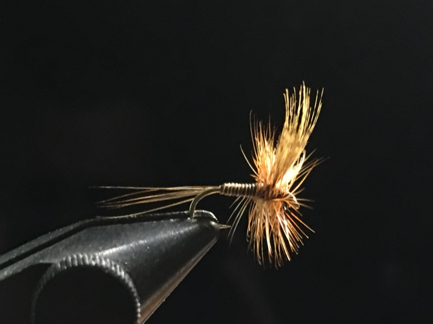 Red Quill