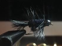 Black Beadhead