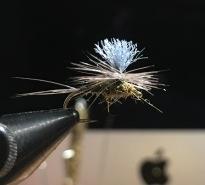 Buggy BWO Parachute