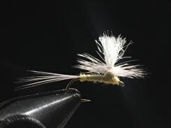PMD-White Parachute